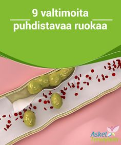9 valtimoita puhdistavaa ruokaa  Tiesitkö, että monien muiden hyötyjen lisäksi ekstraneitsyt-oliiviöljy auttaa sinua puhdistaman valtimoitasi, sillä se hoitaa sydämesi ja verisuontesi terveyttä?