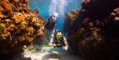 Scuba Diving at Sandals Grande St. Lucia