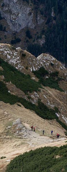 Wędrowcy w Tatrach