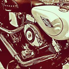 a75b794653 Harley Davidson 110th Anniversary. (European Celebration