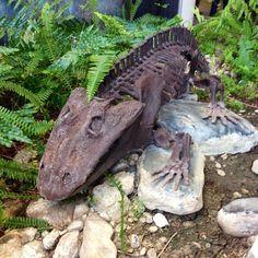 Twitter / kirstisaur: #FossilFriday @usask #Eryops ...