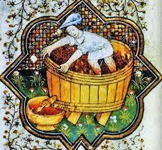 Znalezione obrazy dla zapytania Tacuinum of Rouen