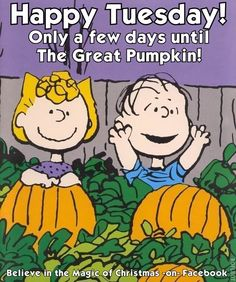 FREE Cartoon Graphics / Pictures / Gifs / Photos: Peanuts / Snoopy pictures Source by Charlie Brown Halloween, Great Pumpkin Charlie Brown, Peanuts Halloween, Charlie Brown And Snoopy, Days Till Halloween, Halloween Fun, Peanuts Cartoon, Peanuts Snoopy, Snoopy Love