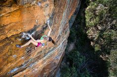 @zuzizuzana on The Pulse at Zap crag in the Blue Mountains  It is nice to be back home in the Blueys where I can have a nice brekky with @treeloveyoga and #maurithebestdogever good climbing session  squeeze in a few snapshots on top of that and all that before the day actually starts.