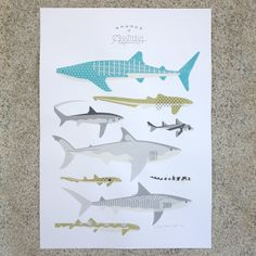 Sharks of Australia print - Amok Island