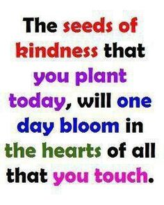 Plant the seeds!