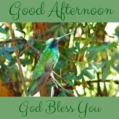 Good Afternoon, God Bless You afternoon good afternoon good afternoon quotes…