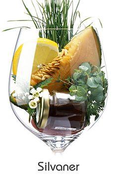 Silvaner #taninotanino #vinosmaximum