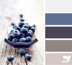 These colors would be perfect in a bathroom or a little boy's room.  They are so beautiful together.