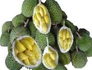 When we lived in Singapore, Durian was a popular fruit.  But, it wasn't on the MRT as it was quite stinky!