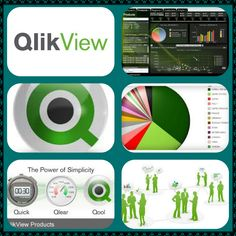 Qlikview : business intelligence software