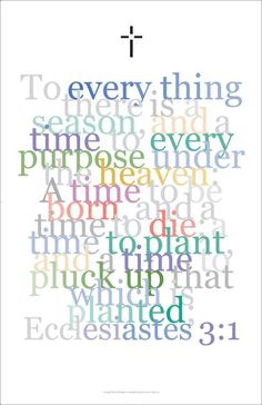 The time to pluck up that which is planted is harvest time!
