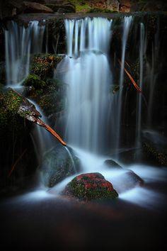Clear Branch Creek - Mt. Hood National Forest, Parkdale, Oregon