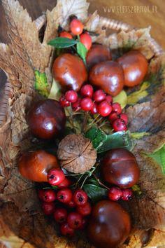 Őszi dekoráció: színes tálka az évszak terményeivel   Életszépítők Basket Decoration, Table Decorations, Recycled Yarn, Autumn Crafts, Autumn Wreaths, Recycling, Fruit, Album, Home Decor