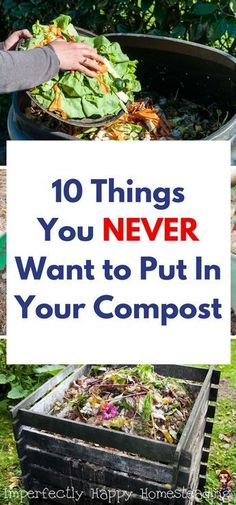 10 Things You NEVER Want to Put in Your Compost.