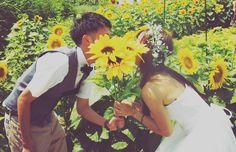 夏の結婚式で向日葵(ひまわり)がテーマのアイテム・演出まとめ   marry[マリー]