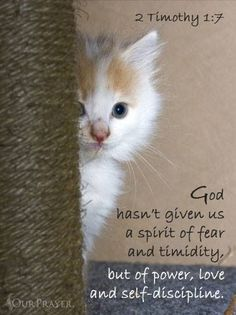 2 Tim. 1:7