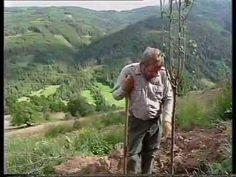 Permakultúra az Alpokban 4. rész (4 részes) - Sepp Holzer mintagazdasága...
