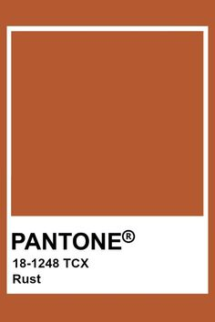 The bride choose Rust orange instead of bright orange to complement the fall season and muted sunset theme.
