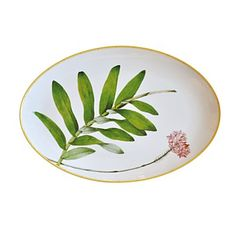 Adapted from botanical drawings of gardens in Mumbai, India, where an abundance of rare plant species grow, precisely detailed floral and vegetal illustrations adorn this fine porcelain platter from B