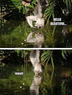 Hilarious images of the week -64 pics- Hello Beautiful