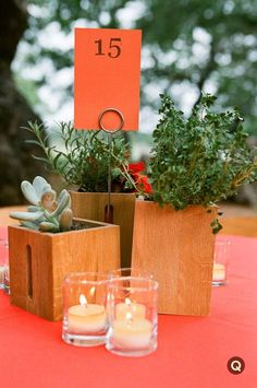 Centerpieces (also at Three Points).