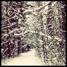 I remember these kind of days...playing like I was a kid who just walked thru the wardrobe into Narnia...