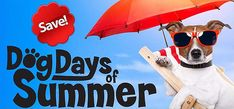Dog Days of Summer Specials On All Pool And Hot Tub Chemicals, Floats, Toys And More! Spa Chemicals, Swimming Pool Chlorine, Hot Tub Cover, Summer Special, Pet Treats, Furniture Outlet, Signature Design, Summer Sale, Dog Days