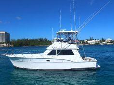 Top 10 Nassau, Bahamas Fishing Charters for 2020 - FishingBooker Nassau Bahamas, Fishing Charters, Fishing Guide, Sport Fishing, Saltwater Fishing, Island Life, Water Sports, Boating, Group