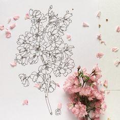 200 отметок «Нравится», 13 комментариев — Juliana Apina (@julianaapina) в Instagram: «Мой Инстаграм превращается в журнал какой-то цветочной феи))) всё такое розовенькое, сразу хочется…»