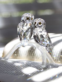 Swarovski Owls, crystal and trop chere