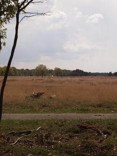 Doldersum, Drenthe.
