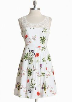 Shopruche.com...Sunshine kissed blooms have breezed onto this white cotton dress by BB Dakota complemented with crochet details, crisp pleats, and a hidden side zipper closure. Fully lined 100% cotton. $93