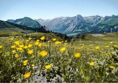 Bregenzerwald Kurztripp – lifeviewstory.de  Tipps für einen Urlaub in und um den Bregenzerwald. Wanderungen, Schlecht-Wetter Möglichkeit und ein tolles Hotel.