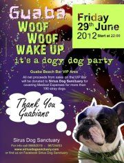 [Charity] GUABA dogy dog party @ Guaba Beach Bar (Limassol)