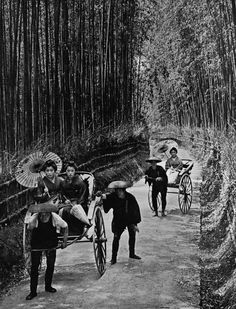 "A bamboo avenue at Kyoto from ""In lotus-land Japan"", 1910 by H.G.Ponting"