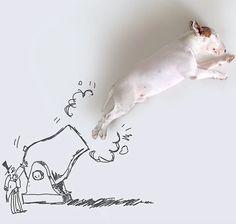 ilustraciones-interactivas-perro-jimmy-choo-rafael-mantesso (6)