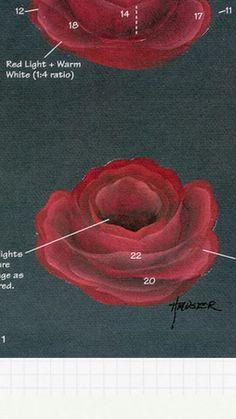 close up from Priscilla Hauser book Beautiful Roses