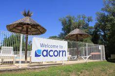 acorn-adventure-arde