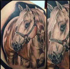 Absolutely beautiful! Horse Tattoo Design, Horse Tattoos, Tattoo Designs, Coyote Tattoo, Pencil Drawings, Art Drawings, Cool Tattoos, Tatoos, Horse Sketch