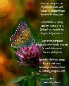 (Love) A butterfly with rainbow colors. Beautiful butterflies and gardens go… Rainbow Butterfly, Butterfly Kisses, Butterfly Colors, Butterfly Poems, Butterfly Meaning, Butterfly Images, Butterfly Pin, Butterfly Birthday, Rainbow Flowers