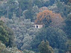 """Άρωμα Ικαρίας: """"Η Χρήση γης στην Ικαρία  κατά τα χρόνια της Τουρκ... River, Outdoor, Outdoors, Outdoor Living, Garden, Rivers"""