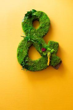 Esperluette végétal ht 80cm. Symbols, Lettering, Drawing Letters, Glyphs, Icons, Brush Lettering