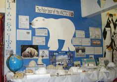 Polar Bear of the Arctic classroom display photo - Photo gallery - SparkleBox
