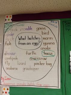 Day 1: Oviparous Animal Unit: I started an Oviparous Animal Unit by handing out plastic eggs with different oviparous animals inside.  The students had to predict what would hatch from their egg.  We used a Circle Map to log their predictions.  After they opened their egg, we added to the map. Next, we read Chickens Aren't the Only Ones.
