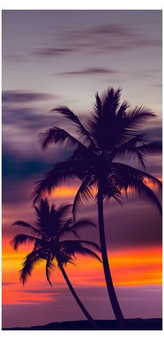 Palm trees purple sunset by fred bahurlet (wamdesign Palm Trees Purple Sunset – Photography Sunset Pictures, Nature Pictures, Beautiful Landscape Pictures, Beautiful Landscape Photography, Sunset Pics, Iphone Background Wallpaper, Beach Wallpaper, Cloud Wallpaper, Wallpaper Quotes