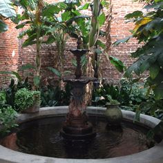 Pharmacy Museum Courtyard, New Orleans---visited this almost 30 years ago and still remember how great it was!