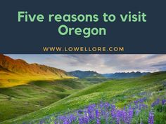 Located on the west coast of the United States, between a state of Washington and California, Oregon is often neglected, and it isn't usually the first destination people choose. So, if you decide to visit someday this state, many people may be surprised with your decision. But, make sure to ignore their opinion because Oregon …