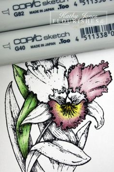 copic coloring - Orchids - bjl