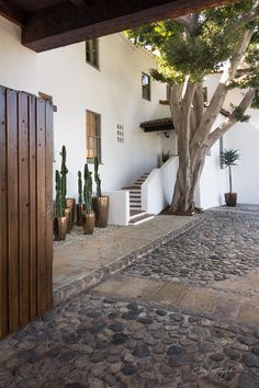 Spanish style entry with cobblestone driveway and cactus Courtyard Exterior Stairs, Exterior Paint, Exterior Design, Entryway Stairs, Patio Stairs, Exterior Windows, Outdoor Stairs, Spanish Style Homes, Spanish House